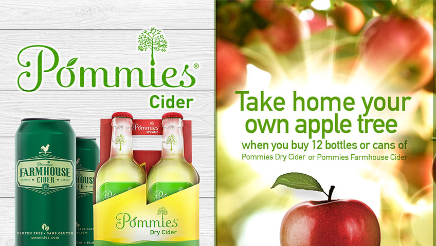 Take home your own apple tree